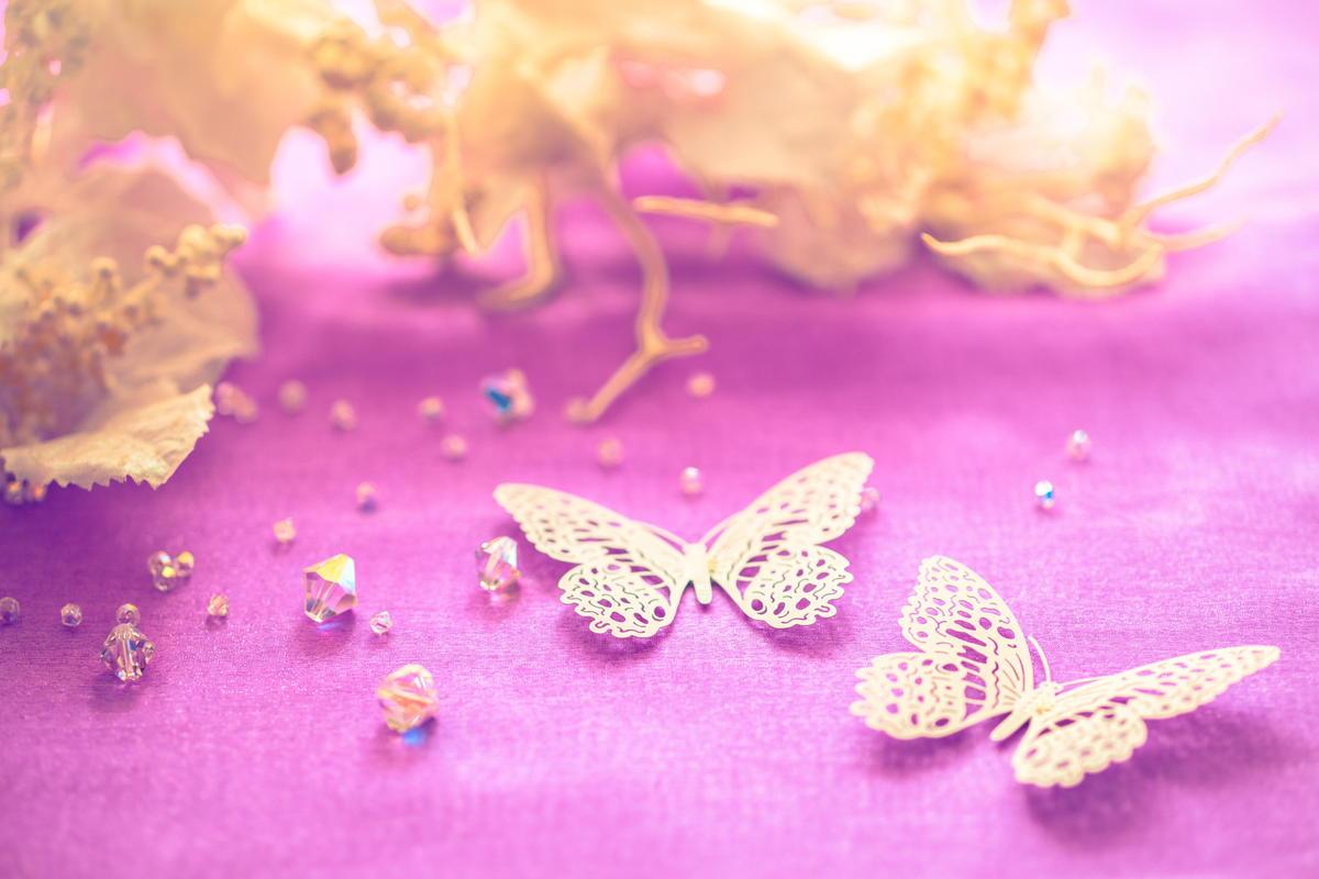 蝶のイメージ